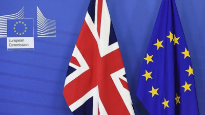 Overview about the current Domestic Dustoms Agency guidelines on Brexit